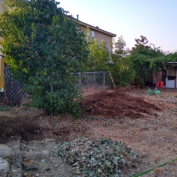 American Tree Company Apple Valley Ca Tree Stump Removal Image After Stumps Removed